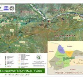 Feasibility study Mapungubwe National Park
